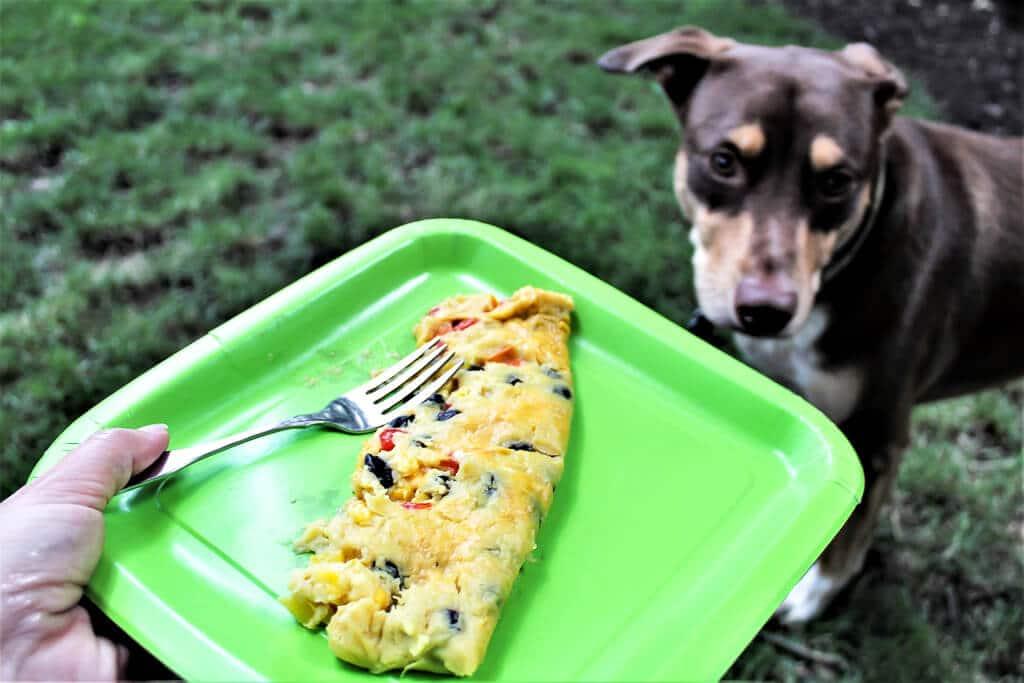 Vegan Camping Food Omelette
